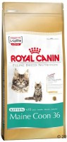 "Royal Canin ""Kitten Мaine Coon 36"""