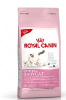 "Royal Canin ""Mother & BabyCat"""